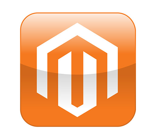 Hire Top Magento Developers in India & USA